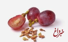 عصاره دانه انگور موجب بهبود سندروم متابولیک می شود
